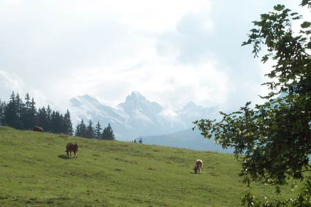 View from Kleine Scheidegg to Wengen path