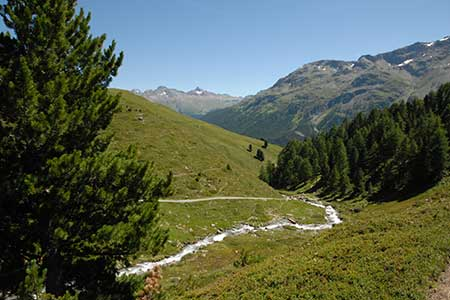 Climb south-west from footbridge to Sils Maria